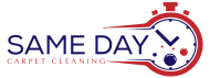 Same Day Carpet Cleaning - Dallas