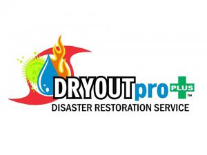 DRYOUTpro PLUS